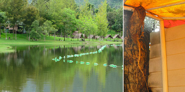 Sprite Bottle Bouy and the Toilet built around a tree
