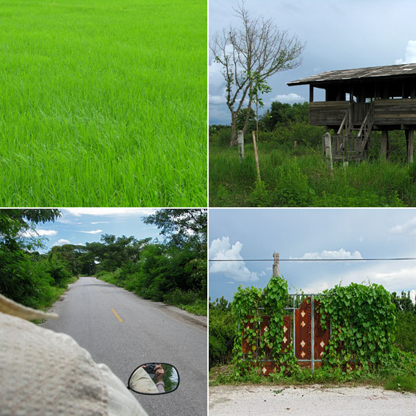 Rural Drive...Rice Field, Watch House, On the Road, Gate to Nowhere