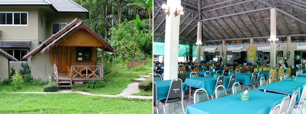 Eco-Lodging & Cafeteria