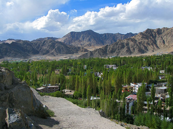 The view of the river valley from the top of the stupa.  These tall skinny mountain trees were stunning.