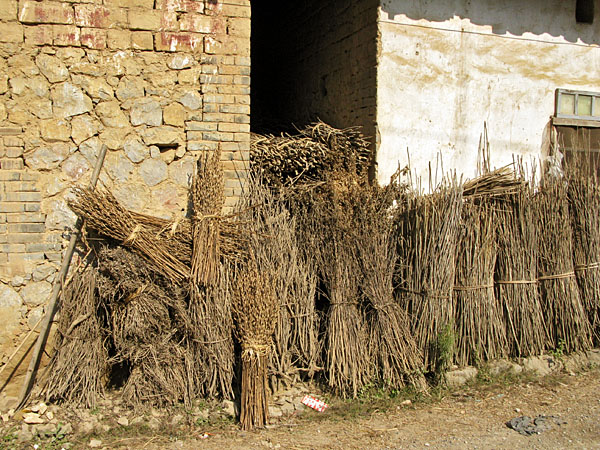 Wheat drying in front of a village home