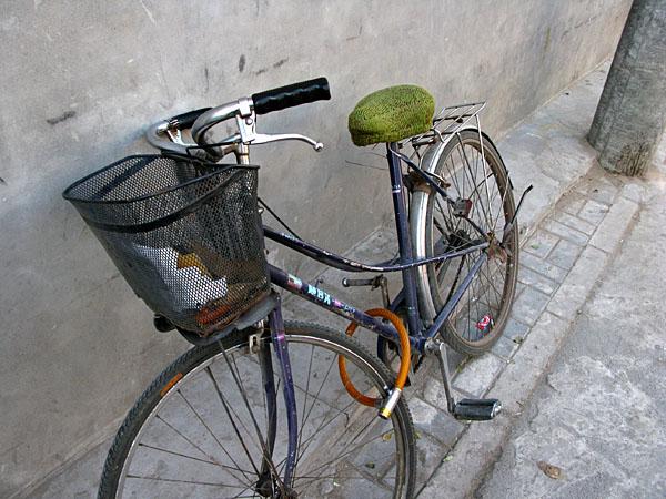ride some bikes,