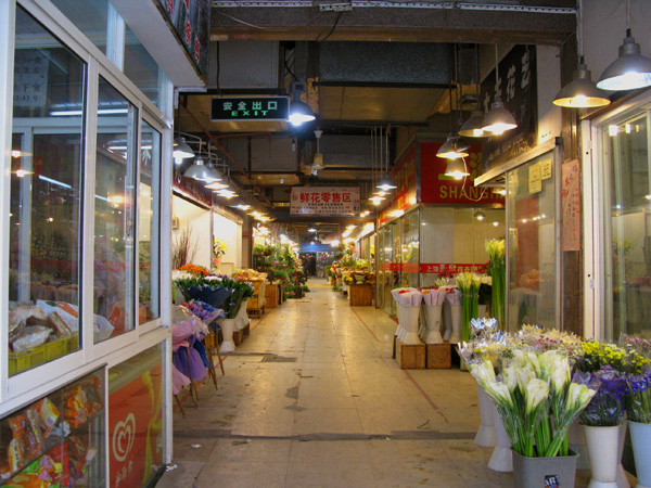 And I did indeed ride bikes all day. First, I went to the flower market.