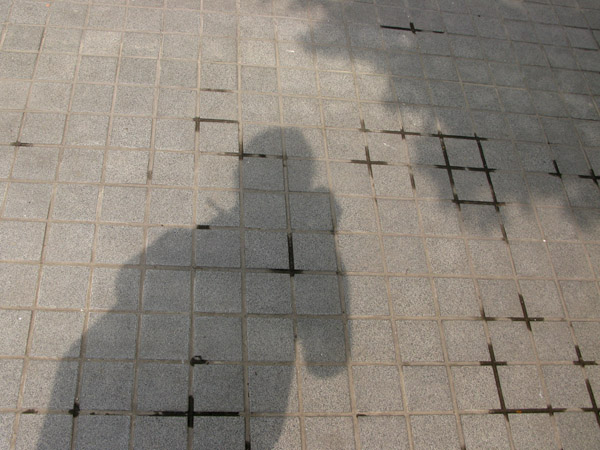 Shadows means there's sun.