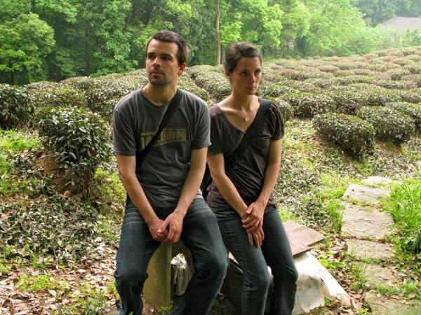 Sitting in the tea fields