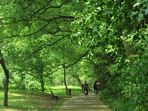 Biking in the Botanical Gardens