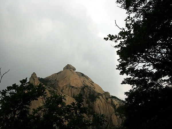 The peak from the forest