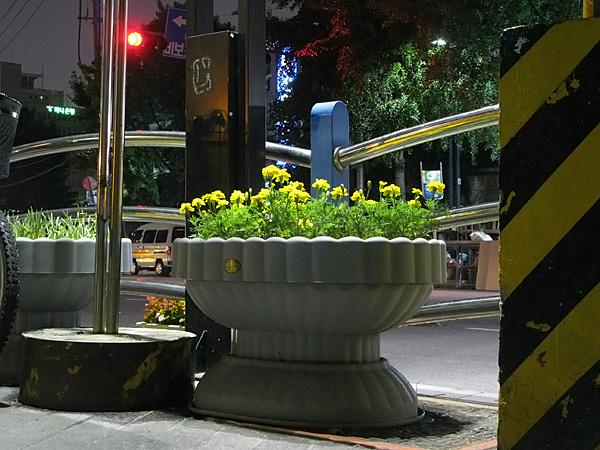 Street landscape