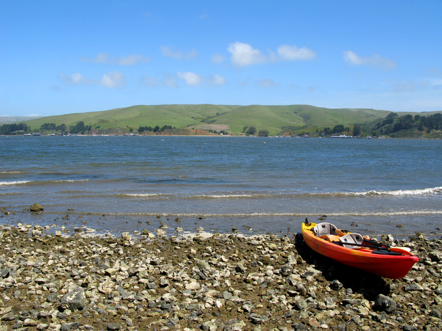 Kayaking on Tamales Bay