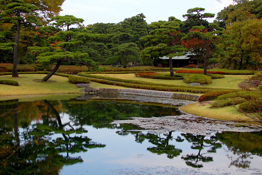 A true Japanese Garden