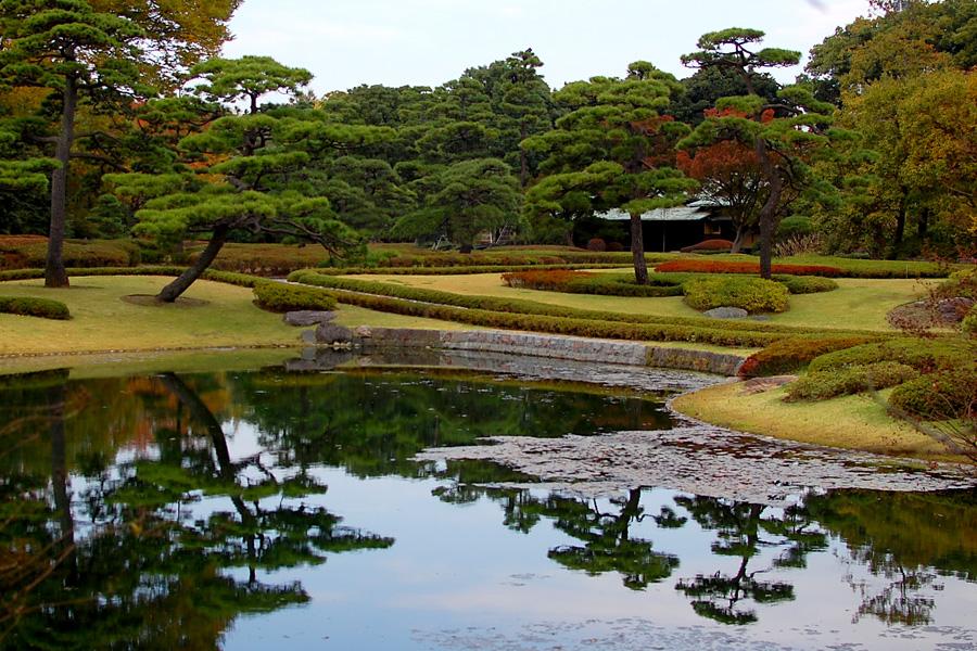 A true Japanese Garden