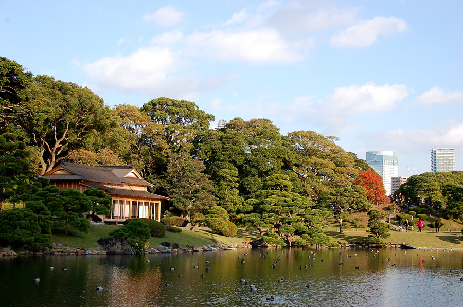 The tea house at Hamarikyu Gardens