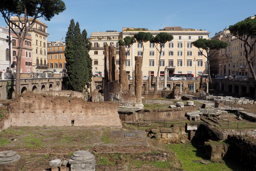 Ancient Ruins/Cat Sactuary