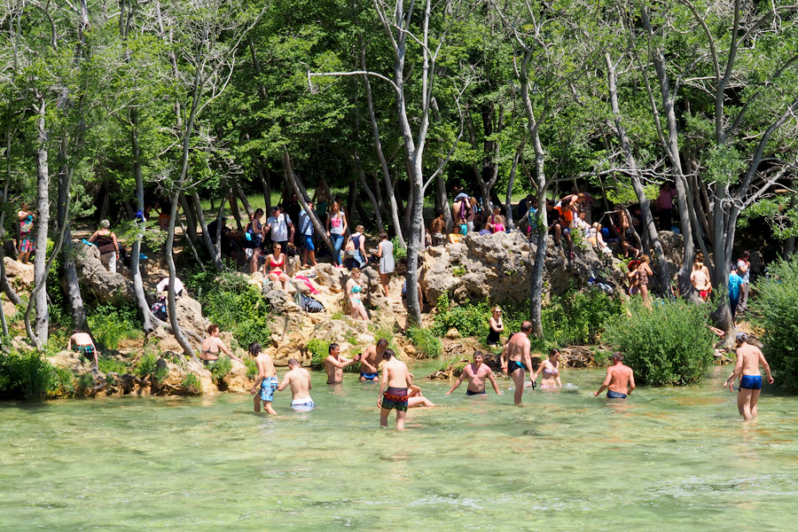 Swimmers and spectators