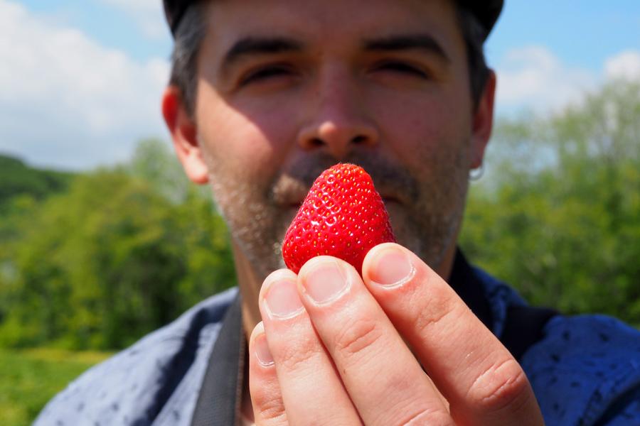 Strawberry!!!!!!!!!!!!!!!!!!